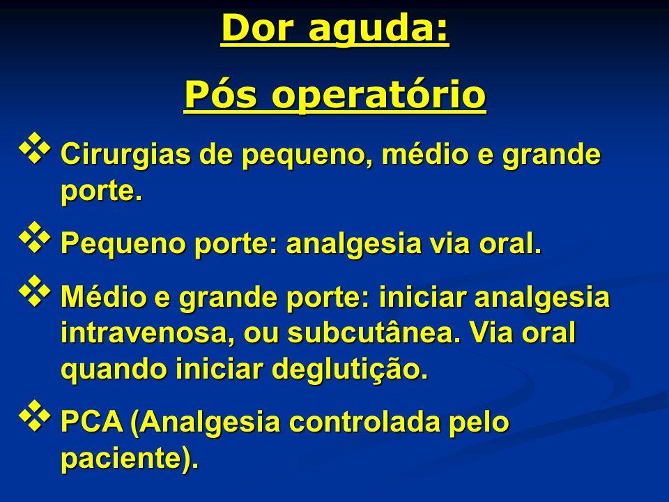 Dor aguda: Pós operatório Cirurgias de pequeno, médio e grande porte. Cirurgias de pequeno, médio e grande porte. Pequeno porte: analgesia via oral. P
