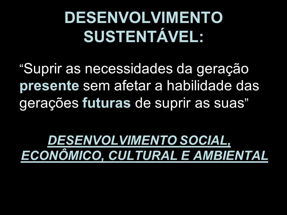 DESENVOLVIMENTO SUSTENTÁVEL: Suprir as necessidades da geração presente sem afetar a habilidade das gerações futuras de suprir as suas DESENVOLVIMENTO
