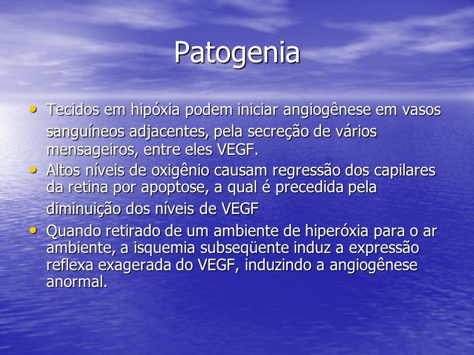 Patogenia Tecidos em hipóxia podem iniciar angiogênese em vasos sanguíneos adjacentes, pela secreção de vários mensageiros, entre eles VEGF. Tecidos e