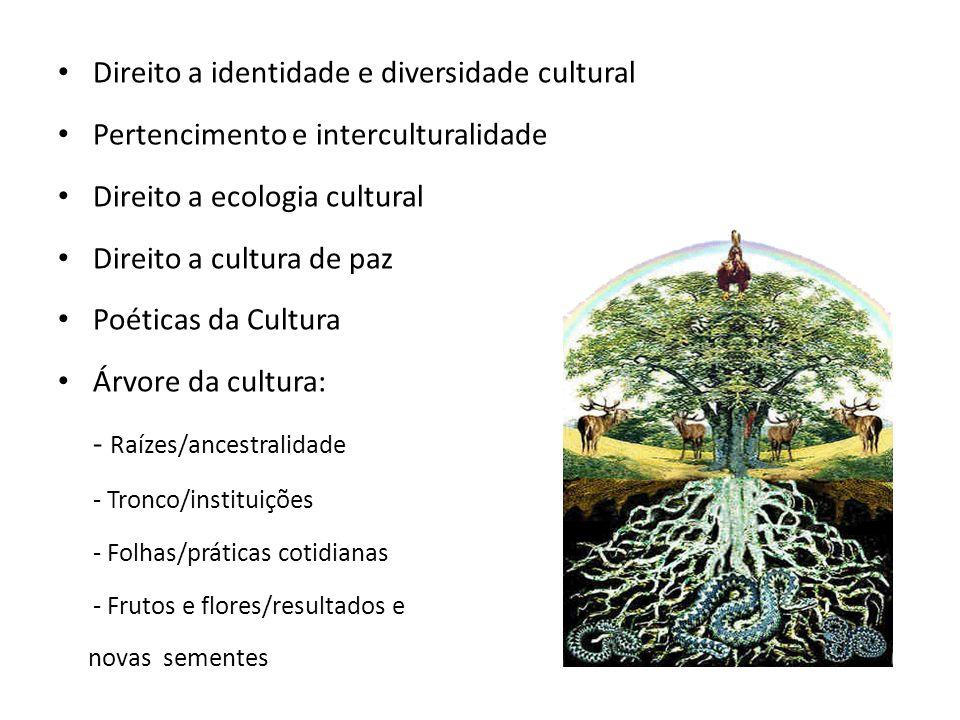 Direito a identidade e diversidade cultural Pertencimento e interculturalidade Direito a ecologia cultural Direito a cultura de paz Poéticas da Cultur