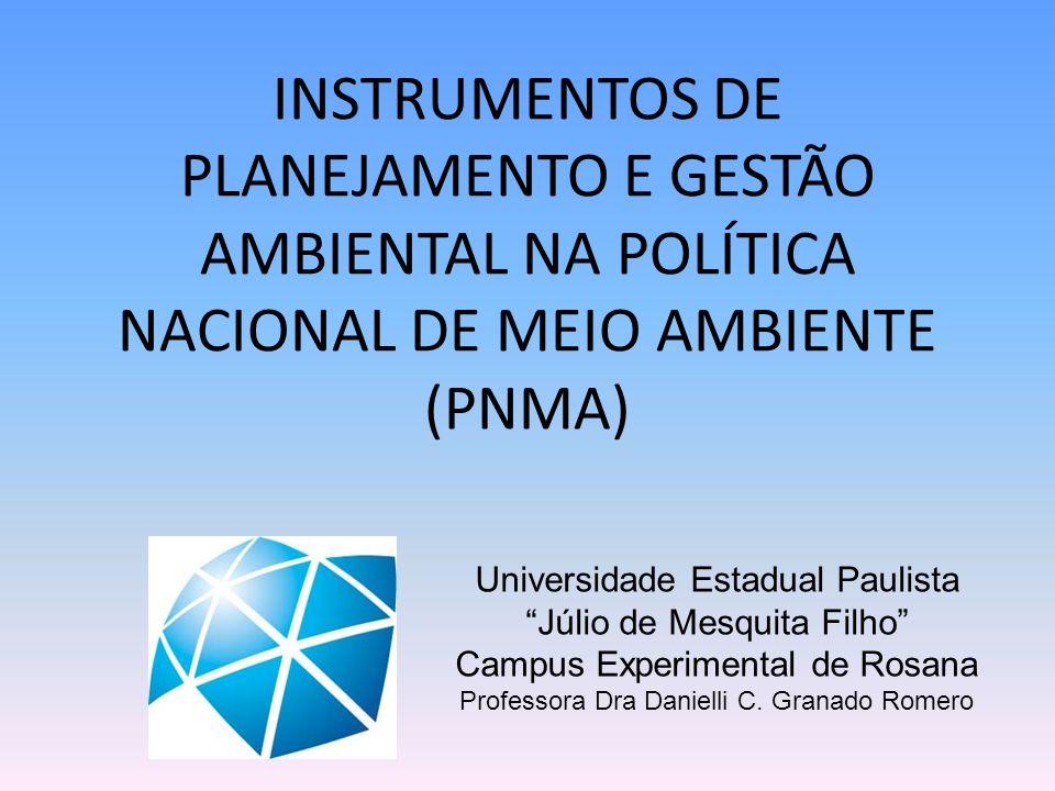 Universidade Estadual Paulista Júlio de Mesquita Filho Campus Experimental de Rosana Professora Dra Danielli C. Granado Romero INSTRUMENTOS DE PLANEJA