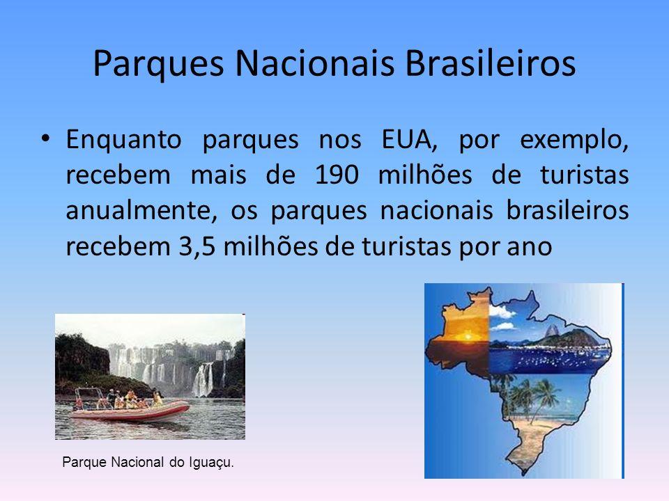 Enquanto parques nos EUA, por exemplo, recebem mais de 190 milhões de turistas anualmente, os parques nacionais brasileiros recebem 3,5 milhões de tur