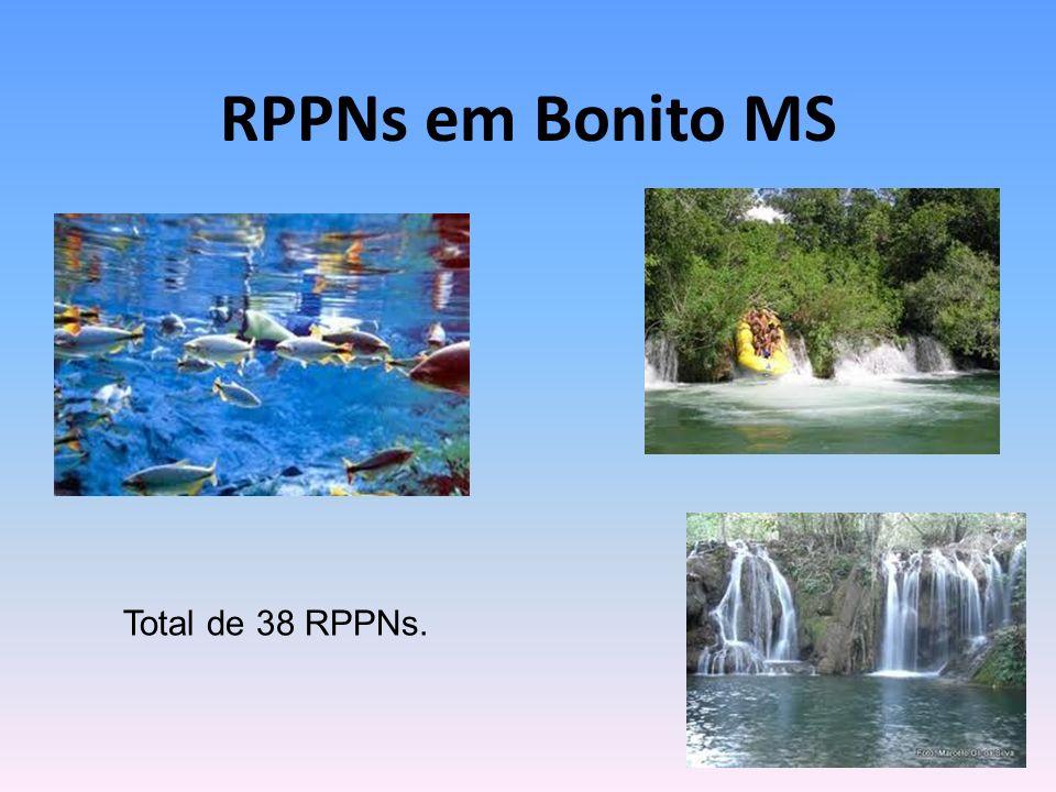 RPPNs em Bonito MS Total de 38 RPPNs.