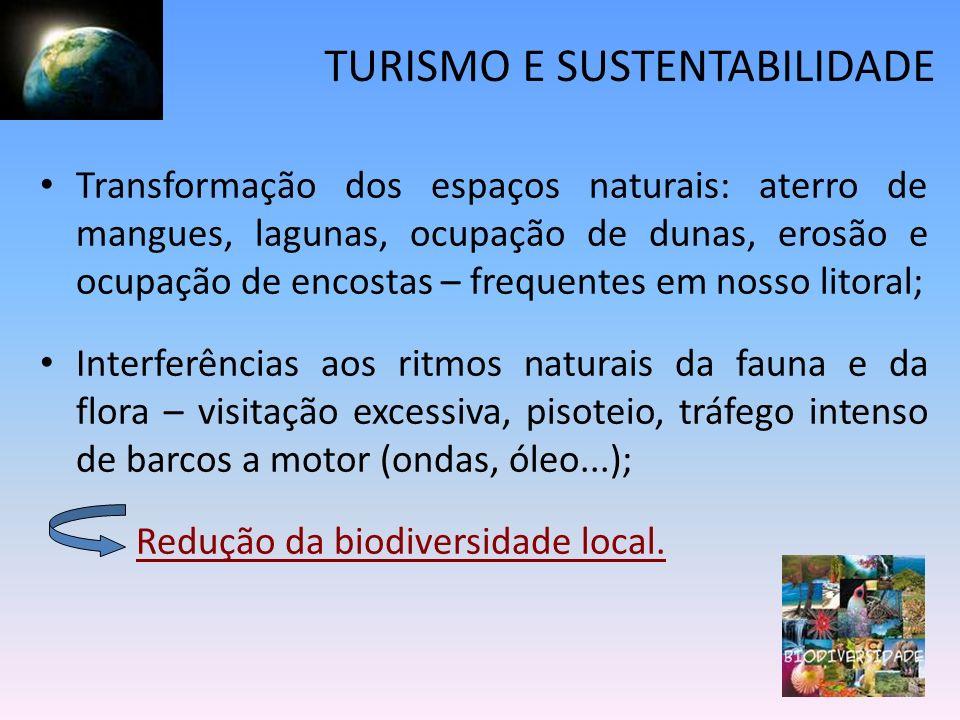 Transformação dos espaços naturais: aterro de mangues, lagunas, ocupação de dunas, erosão e ocupação de encostas – frequentes em nosso litoral; Interf