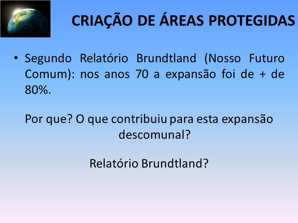 Segundo Relatório Brundtland (Nosso Futuro Comum): nos anos 70 a expansão foi de + de 80%. Por que? O que contribuiu para esta expansão descomunal? Re