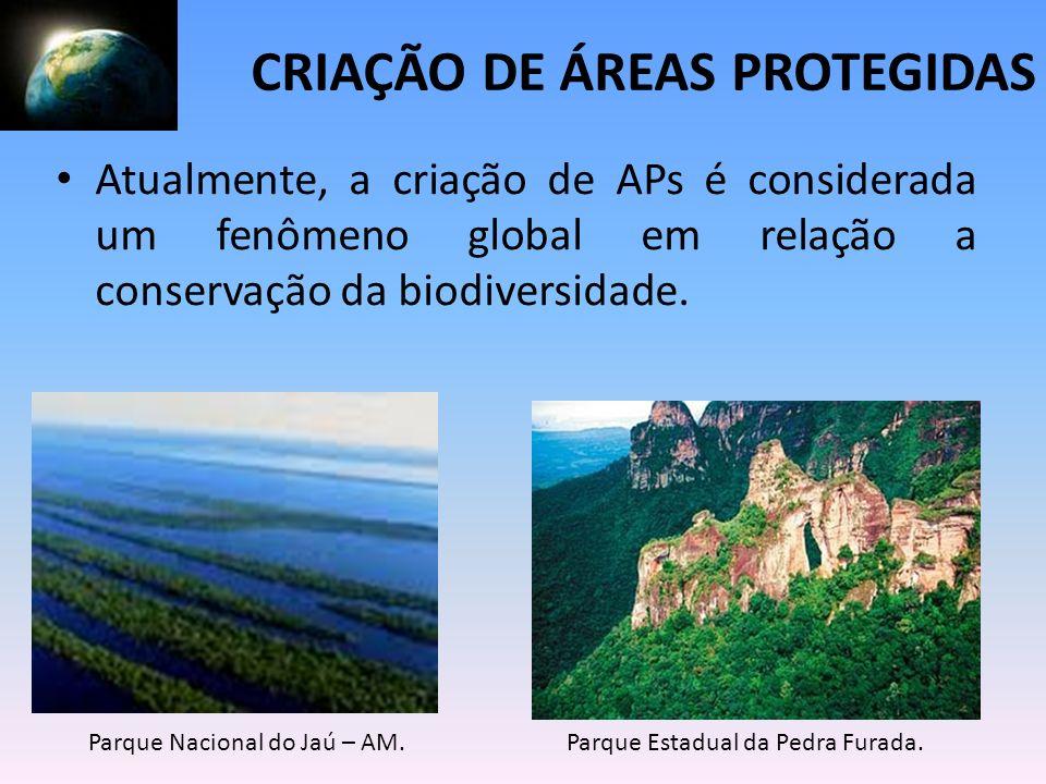 Atualmente, a criação de APs é considerada um fenômeno global em relação a conservação da biodiversidade. Parque Nacional do Jaú – AM.Parque Estadual