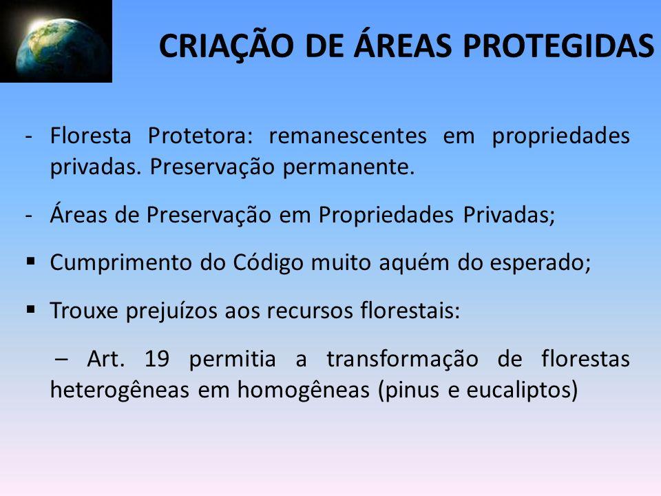 -Floresta Protetora: remanescentes em propriedades privadas. Preservação permanente. -Áreas de Preservação em Propriedades Privadas; Cumprimento do Có