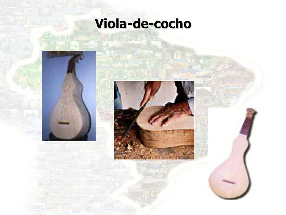 32 Viola-de-cocho