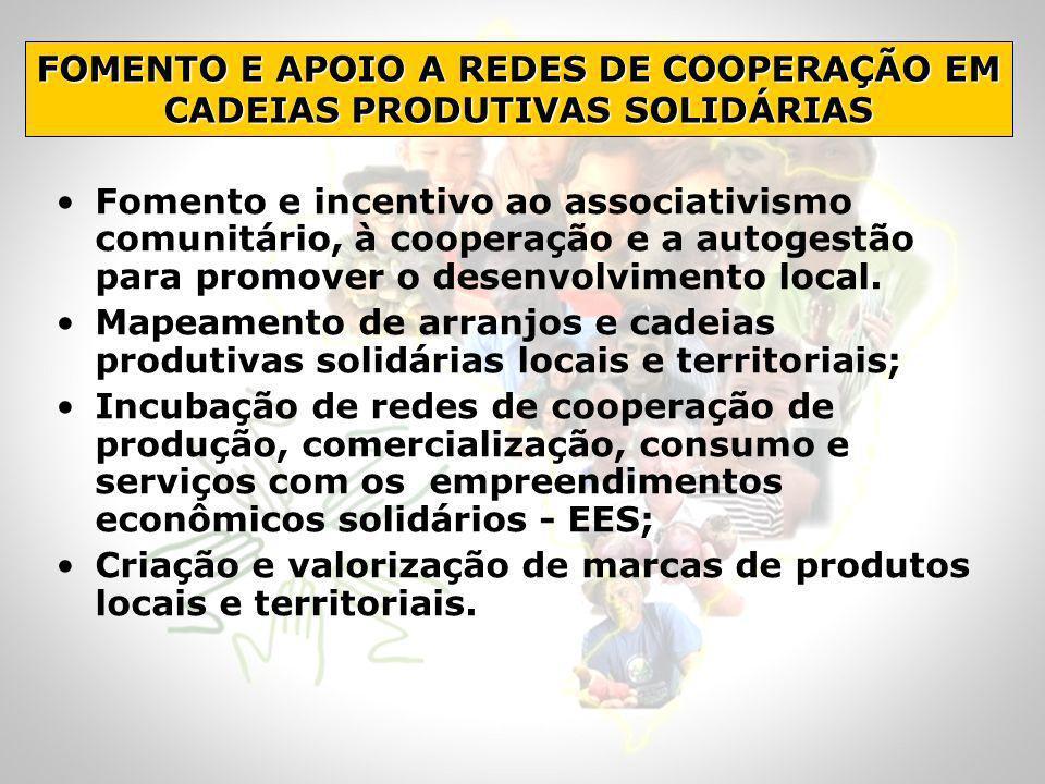 Fomento e incentivo ao associativismo comunitário, à cooperação e a autogestão para promover o desenvolvimento local. Mapeamento de arranjos e cadeias