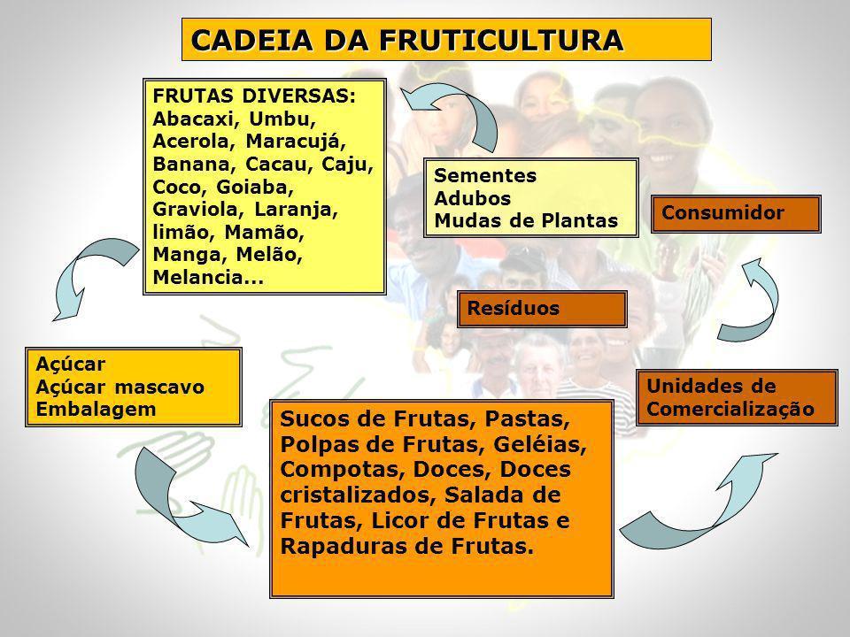 CADEIA DA FRUTICULTURA Sucos de Frutas, Pastas, Polpas de Frutas, Geléias, Compotas, Doces, Doces cristalizados, Salada de Frutas, Licor de Frutas e R