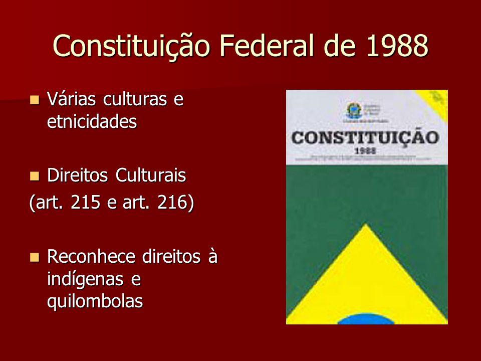 Constituição Federal de 1988 Várias culturas e etnicidades Várias culturas e etnicidades Direitos Culturais Direitos Culturais (art. 215 e art. 216) R