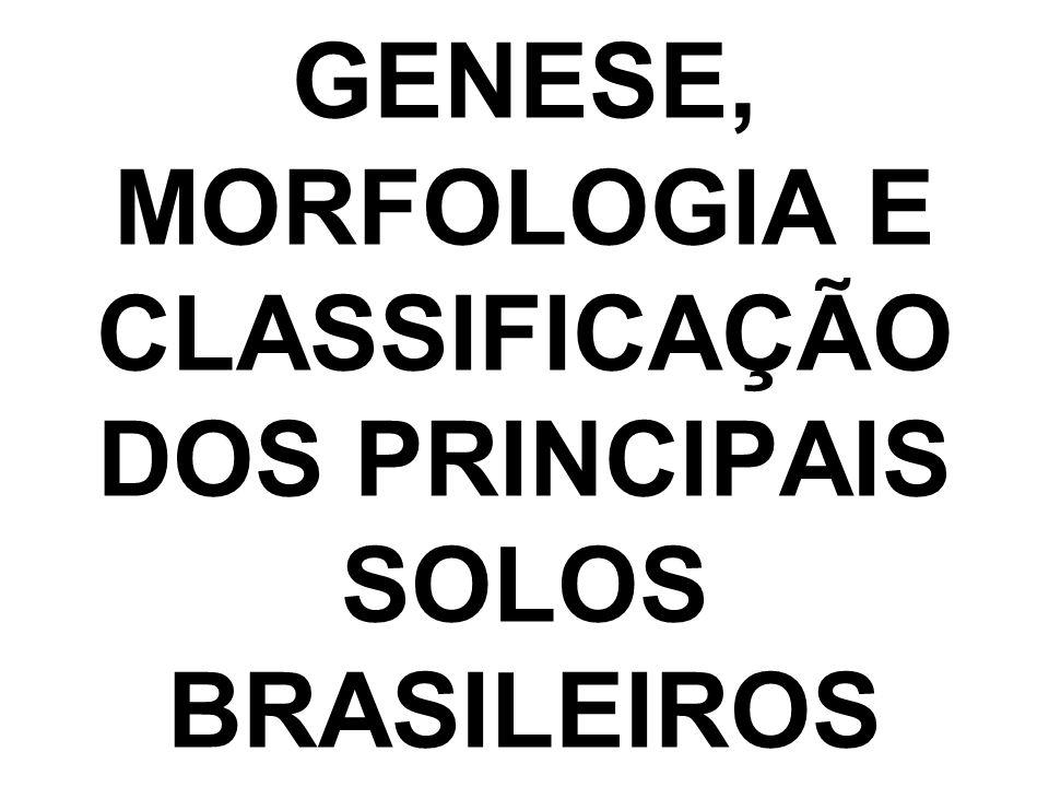 OBJETIVO: Dar ao aluno uma visão geral dos fenômenos e processos de formação dos solos que o auxiliem na compreensão de suas propriedades físicas, químicas e biológicas, assim como as características morfológicas que são usadas para classificar os diferentes tipos de solos; caracterizar os principais tipos de solos brasileiros.