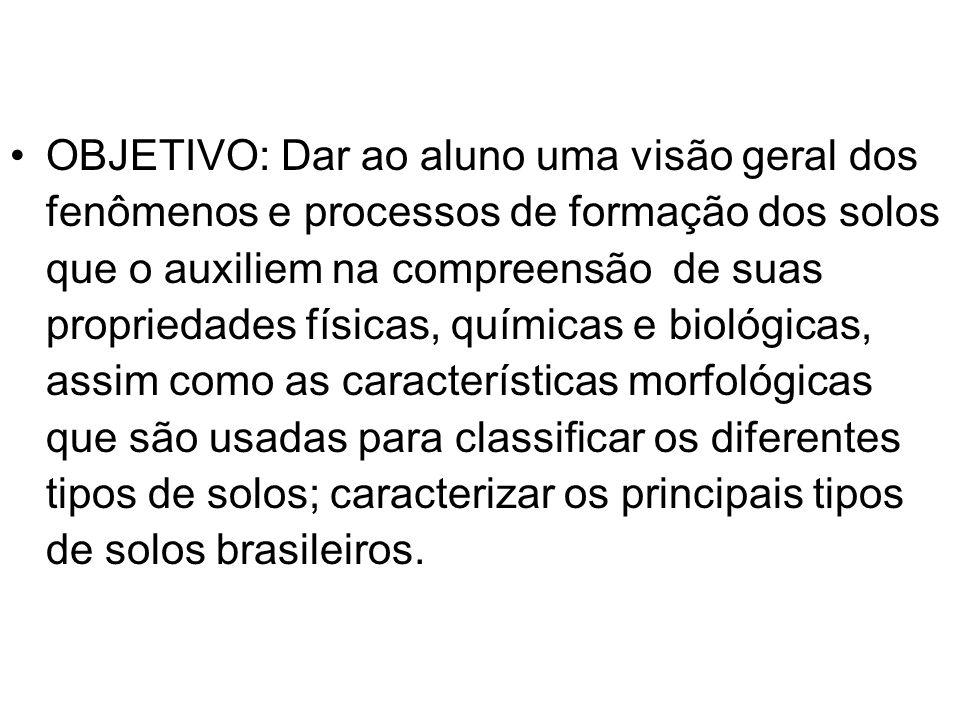 NEOSSOLOS CARACTERÍSTICAS Solos jovens, no início da formação (pequeno desenvolvimento).