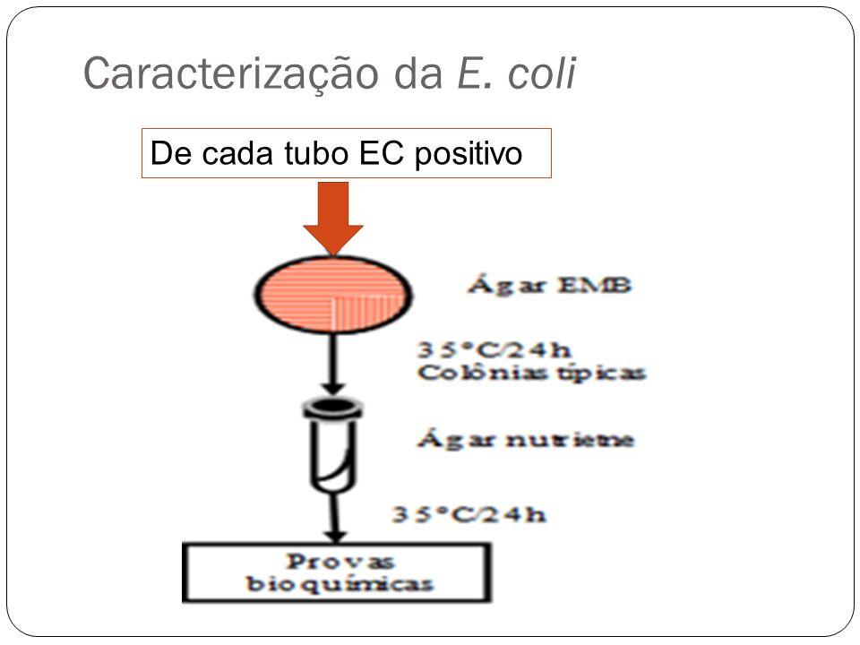 Caracterização da E. coli De cada tubo EC positivo