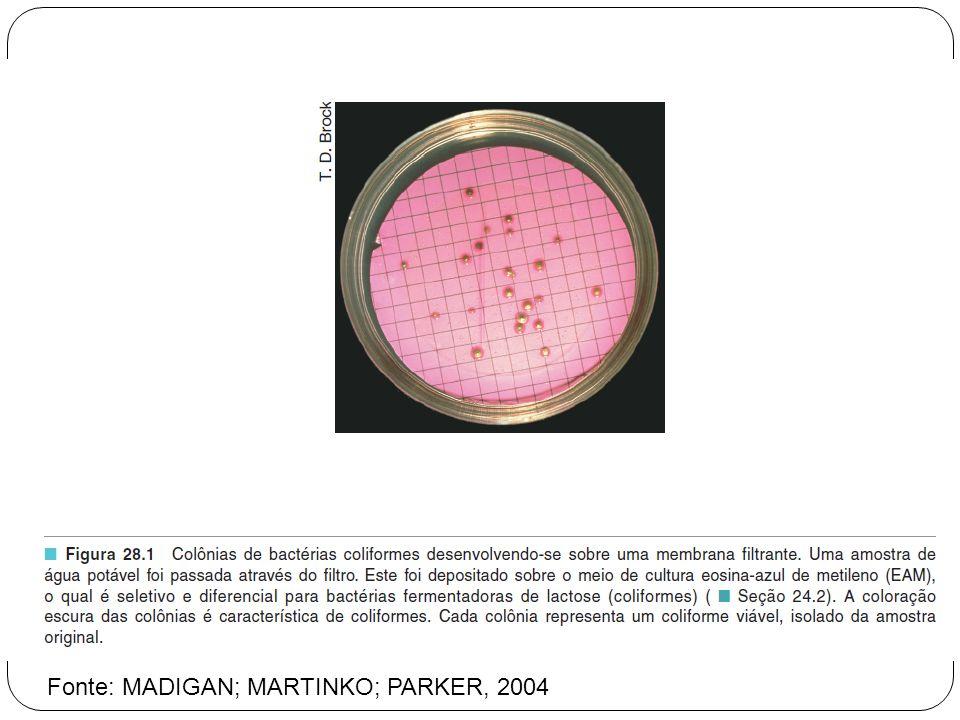 Fonte: MADIGAN; MARTINKO; PARKER, 2004