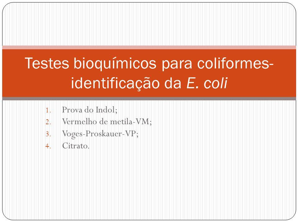 1. Prova do Indol; 2. Vermelho de metila-VM; 3. Voges-Proskauer-VP; 4. Citrato. Testes bioquímicos para coliformes- identificação da E. coli