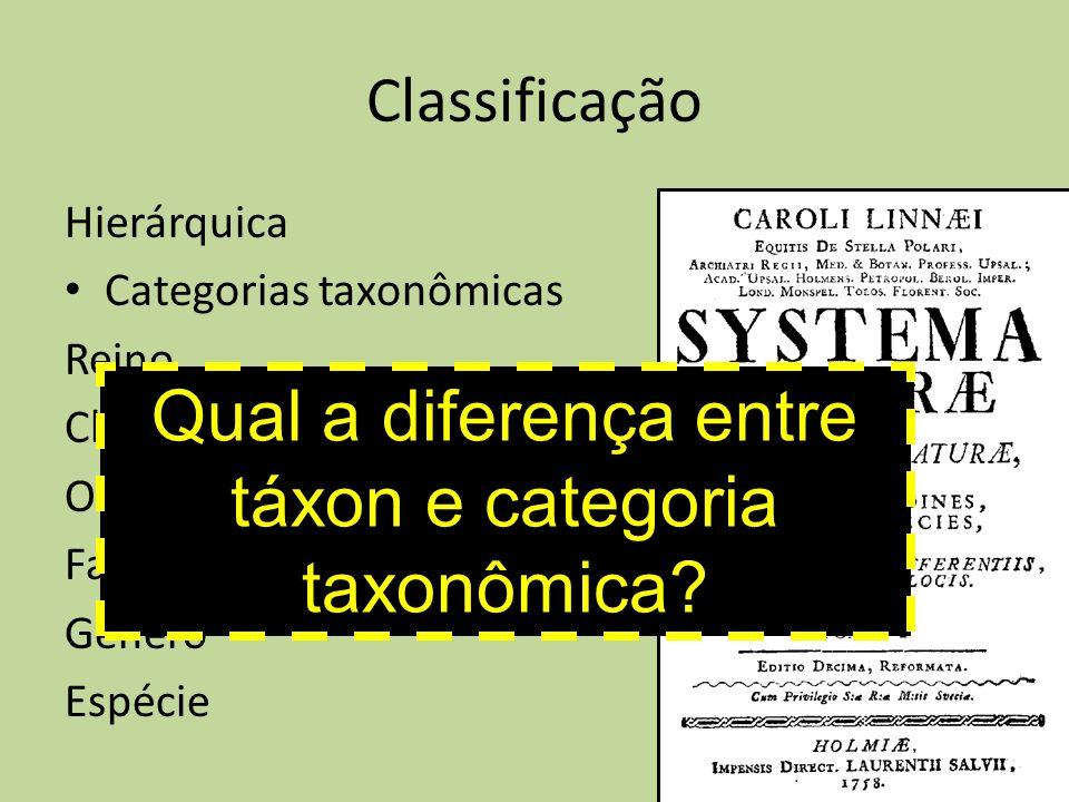 Classificação Hierárquica Categorias taxonômicas Reino Classe Ordem Família Gênero Espécie Qual a diferença entre táxon e categoria taxonômica?