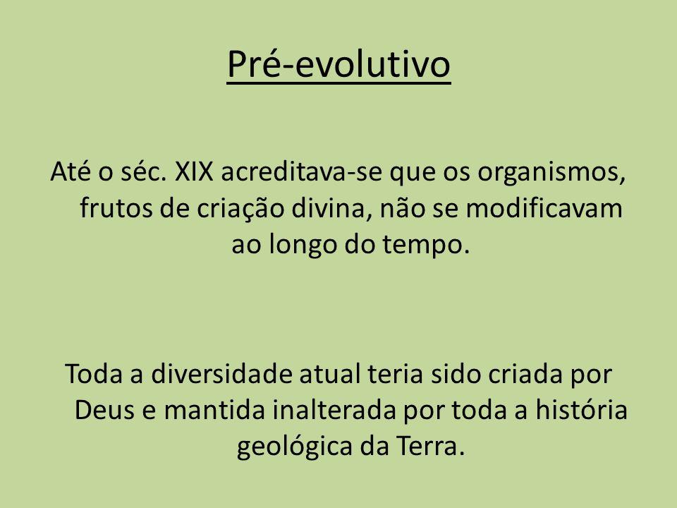 Pré-evolutivo Até o séc. XIX acreditava-se que os organismos, frutos de criação divina, não se modificavam ao longo do tempo. Toda a diversidade atual