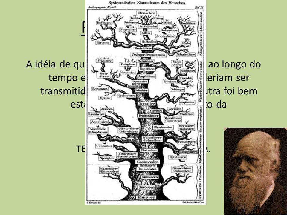 Período Evolutivo A idéia de que os organismos mudavam ao longo do tempo e de que tais mudanças poderiam ser transmitidas de uma geração para outra fo