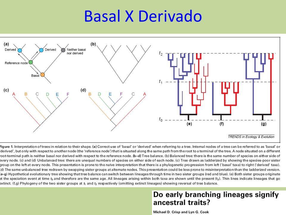 Basal X Derivado