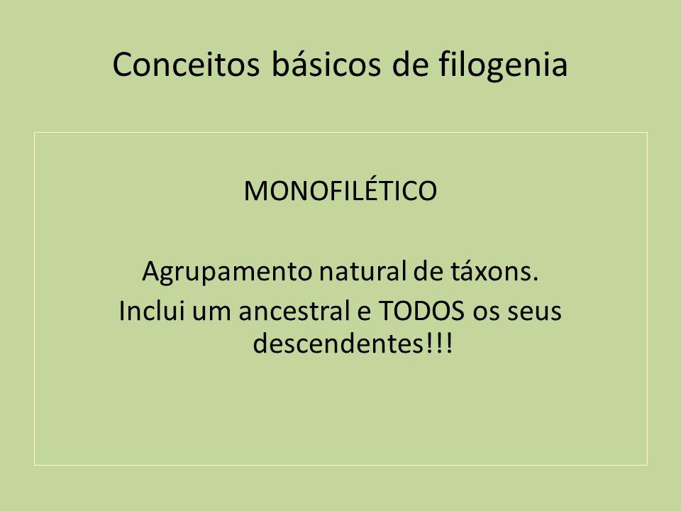 Conceitos básicos de filogenia MONOFILÉTICO Agrupamento natural de táxons. Inclui um ancestral e TODOS os seus descendentes!!!