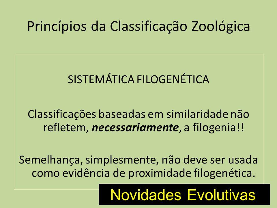 Princípios da Classificação Zoológica SISTEMÁTICA FILOGENÉTICA Classificações baseadas em similaridade não refletem, necessariamente, a filogenia!! Se