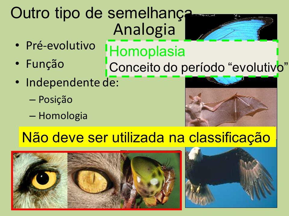 Analogia Pré-evolutivo Função Independente de: – Posição – Homologia Outro tipo de semelhança Não deve ser utilizada na classificação Homoplasia Conce