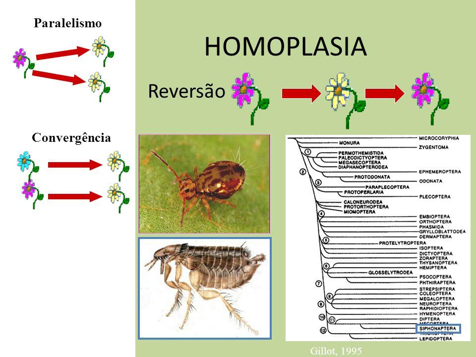 HOMOPLASIA Reversão Convergência Paralelismo Gillot, 1995