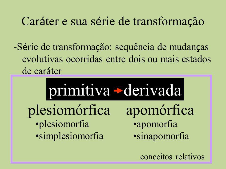 Car á ter e sua s é rie de transforma ç ão -S é rie de transforma ç ão: sequência de mudan ç as evolutivas ocorridas entre dois ou mais estados de car