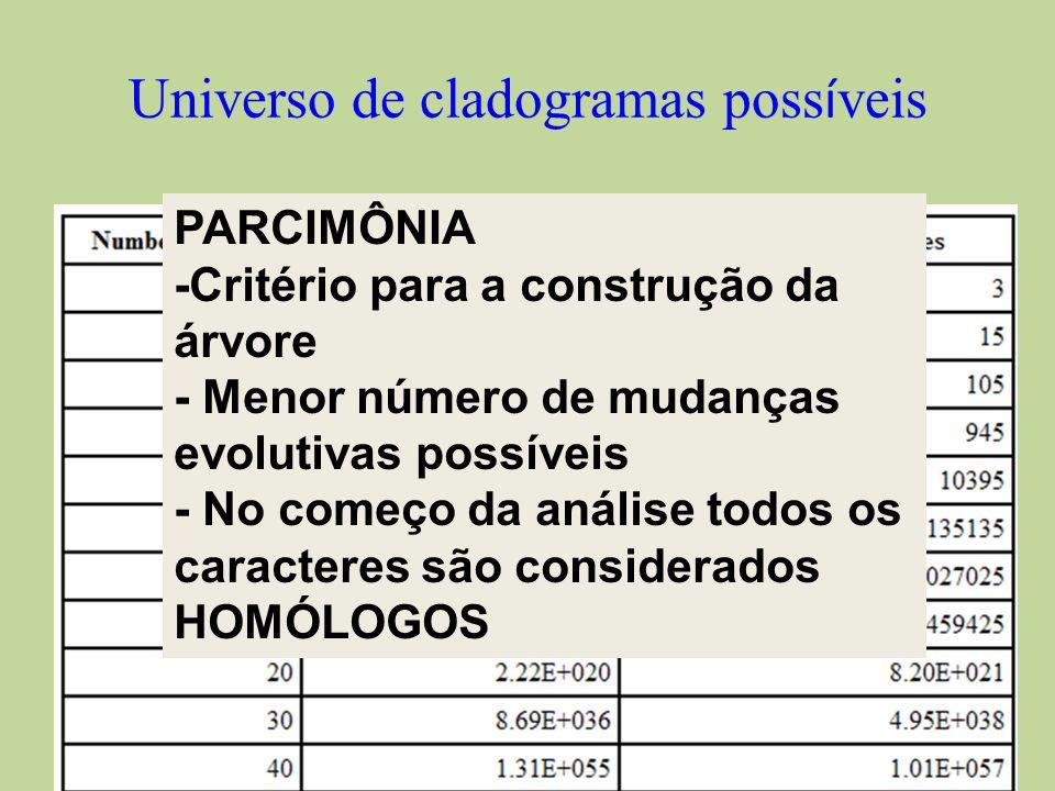 Universo de cladogramas poss í veis PARCIMÔNIA -Critério para a construção da árvore - Menor número de mudanças evolutivas possíveis - No começo da an