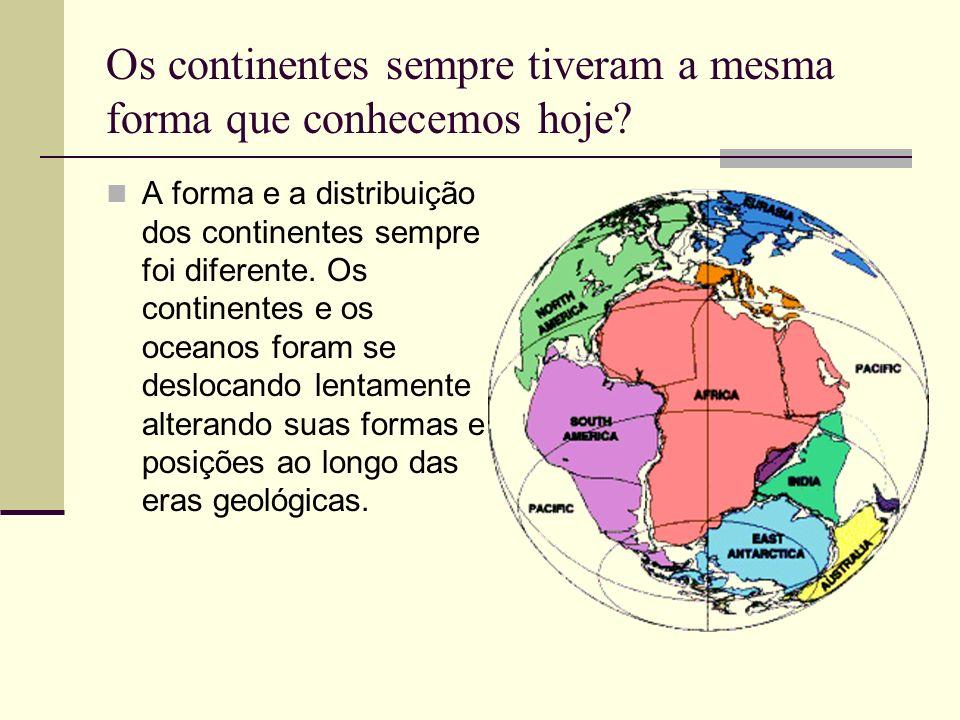 Os continentes sempre tiveram a mesma forma que conhecemos hoje? A forma e a distribuição dos continentes sempre foi diferente. Os continentes e os oc