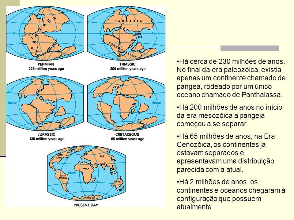 Há cerca de 230 milhões de anos. No final da era paleozóica, existia apenas um continente chamado de pangea, rodeado por um único oceano chamado de Pa