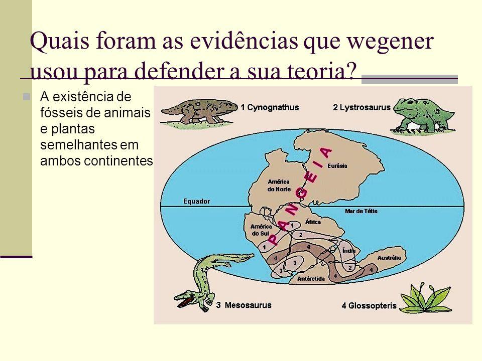 Quais foram as evidências que wegener usou para defender a sua teoria? A existência de fósseis de animais e plantas semelhantes em ambos continentes.