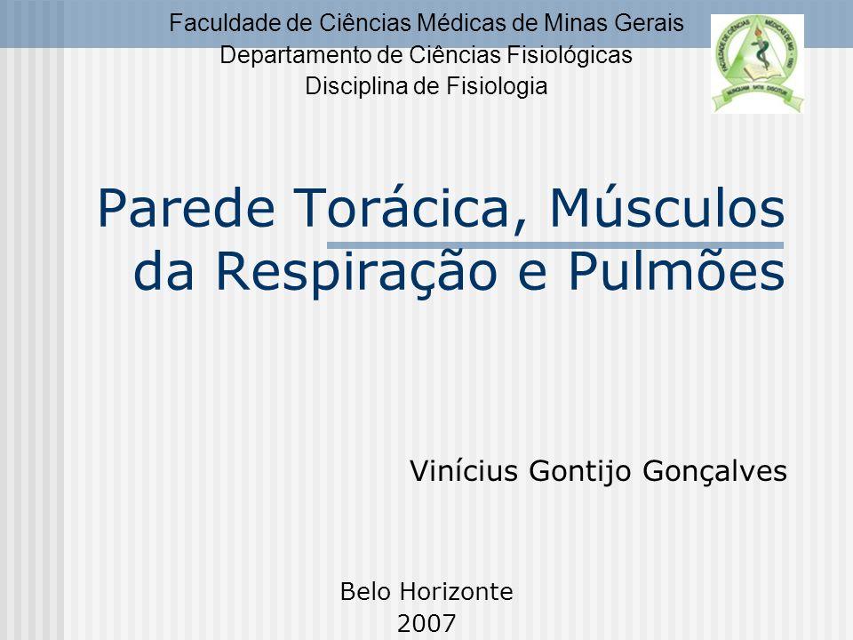 Parede Torácica, Músculos da Respiração e Pulmões Vinícius Gontijo Gonçalves Faculdade de Ciências Médicas de Minas Gerais Departamento de Ciências Fi