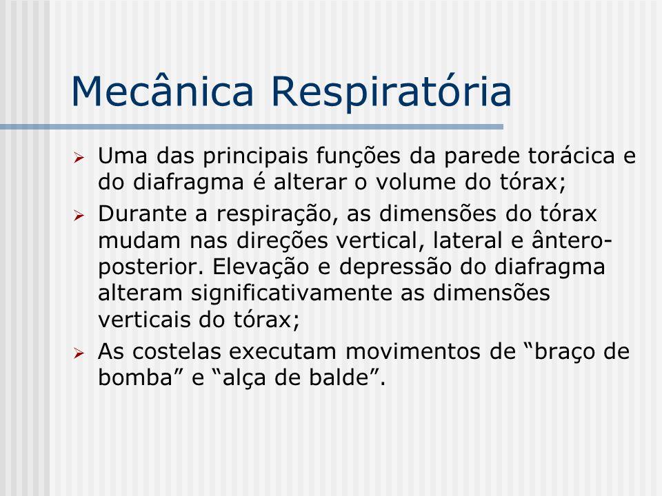 Mecânica Respiratória Uma das principais funções da parede torácica e do diafragma é alterar o volume do tórax; Durante a respiração, as dimensões do