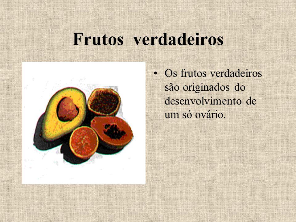 Frutos verdadeiros Os frutos verdadeiros são originados do desenvolvimento de um só ovário.
