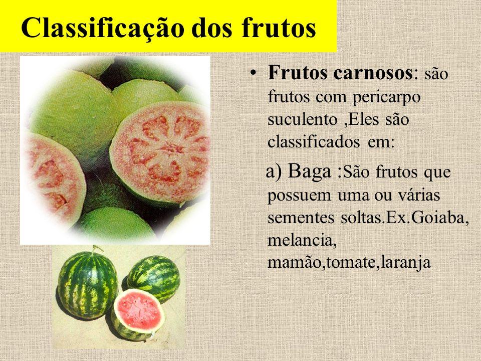 Classificação dos frutos Frutos carnosos: são frutos com pericarpo suculento,Eles são classificados em: a) Baga : São frutos que possuem uma ou várias