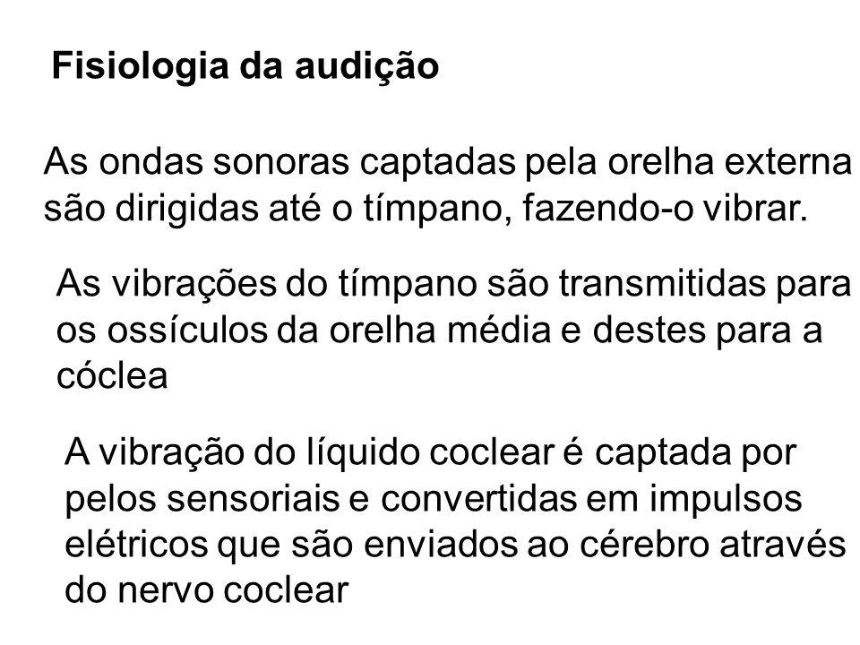 Fisiologia da audição As ondas sonoras captadas pela orelha externa são dirigidas até o tímpano, fazendo-o vibrar. As vibrações do tímpano são transmi