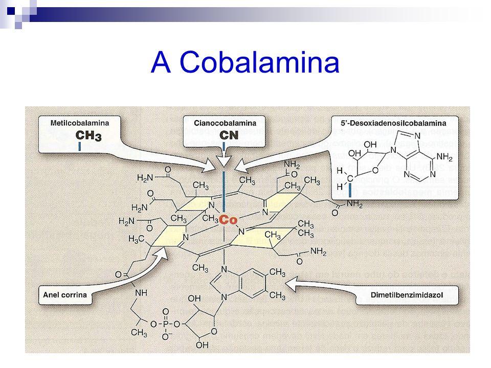 A Cobalamina