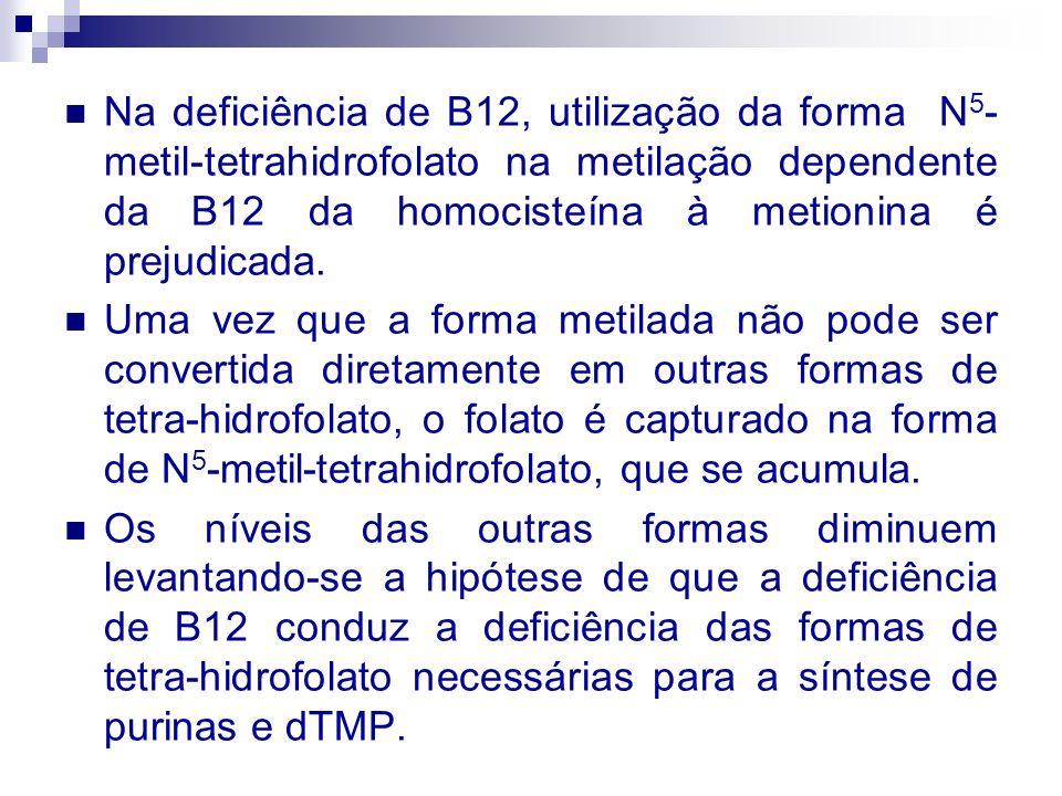 Na deficiência de B12, utilização da forma N 5 - metil-tetrahidrofolato na metilação dependente da B12 da homocisteína à metionina é prejudicada. Uma