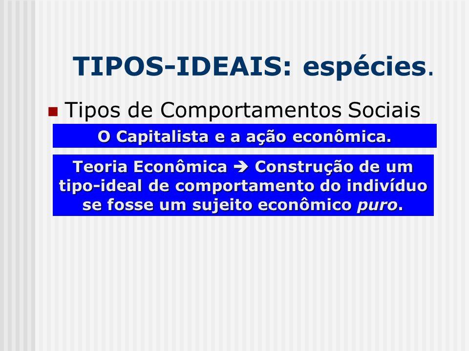 TIPOS-IDEAIS: espécies. Tipos de Comportamentos Sociais O Capitalista e a ação econômica. Teoria Econômica Construção de um tipo-ideal de comportament