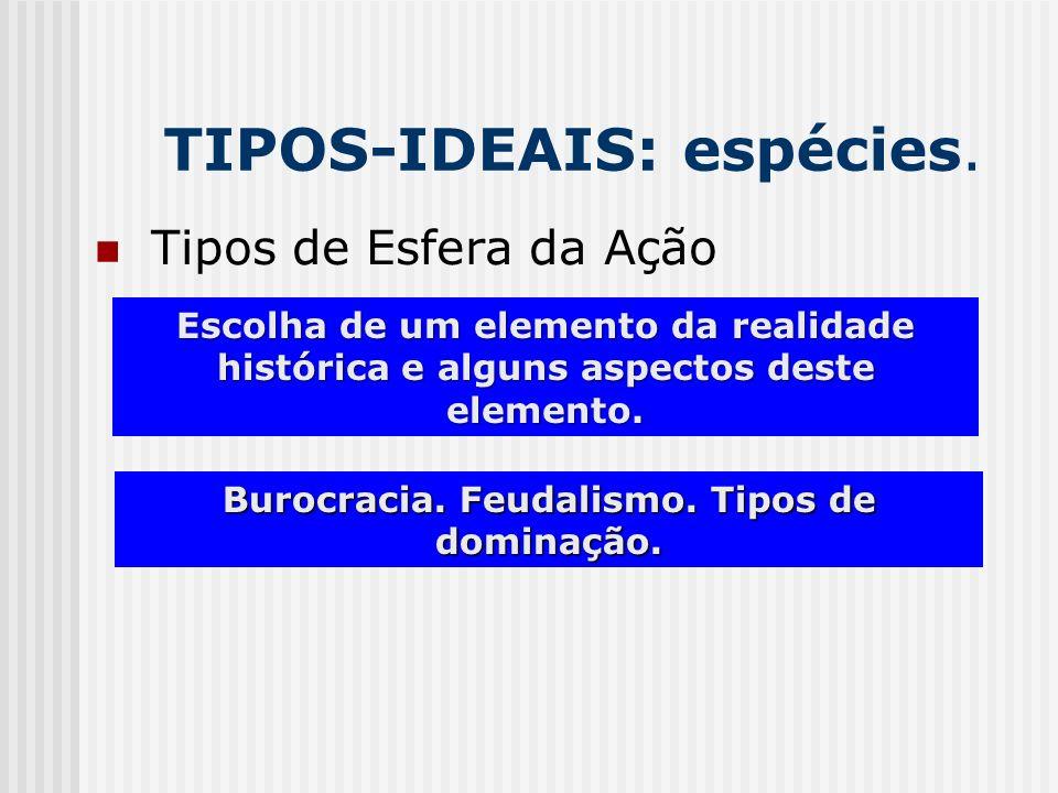 TIPOS-IDEAIS: espécies. Burocracia. Feudalismo. Tipos de dominação. Tipos de Esfera da Ação Escolha de um elemento da realidade histórica e alguns asp