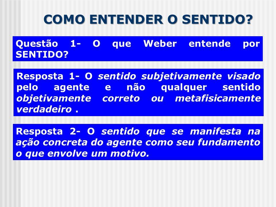 COMO ENTENDER O SENTIDO? Questão 1- O que Weber entende por SENTIDO? Resposta 1- O sentido subjetivamente visado pelo agente e não qualquer sentido ob