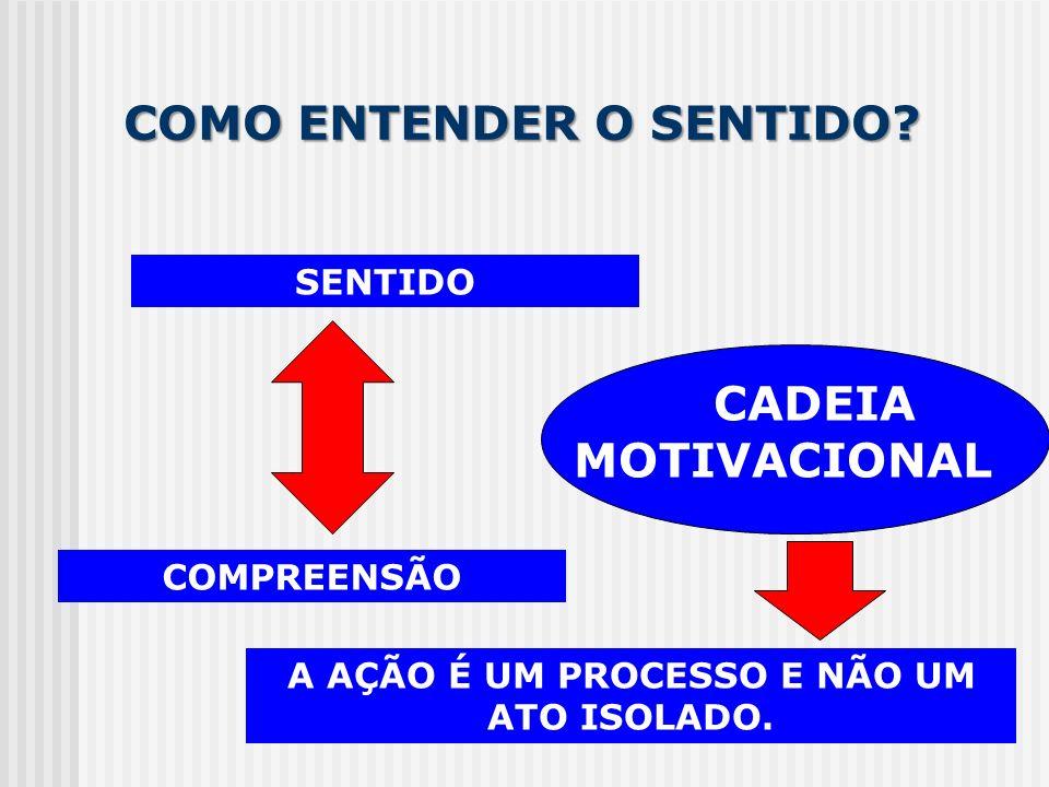 COMO ENTENDER O SENTIDO? SENTIDO COMPREENSÃO CADEIA MOTIVACIONAL A AÇÃO É UM PROCESSO E NÃO UM ATO ISOLADO.