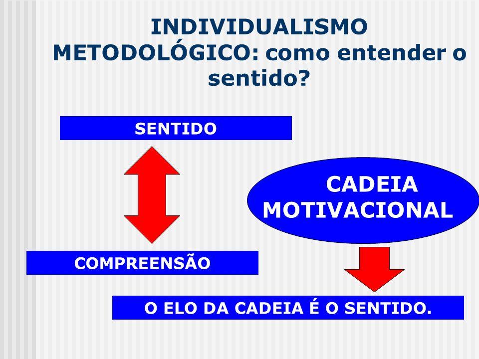 INDIVIDUALISMO METODOLÓGICO: como entender o sentido? SENTIDO COMPREENSÃO CADEIA MOTIVACIONAL O ELO DA CADEIA É O SENTIDO.