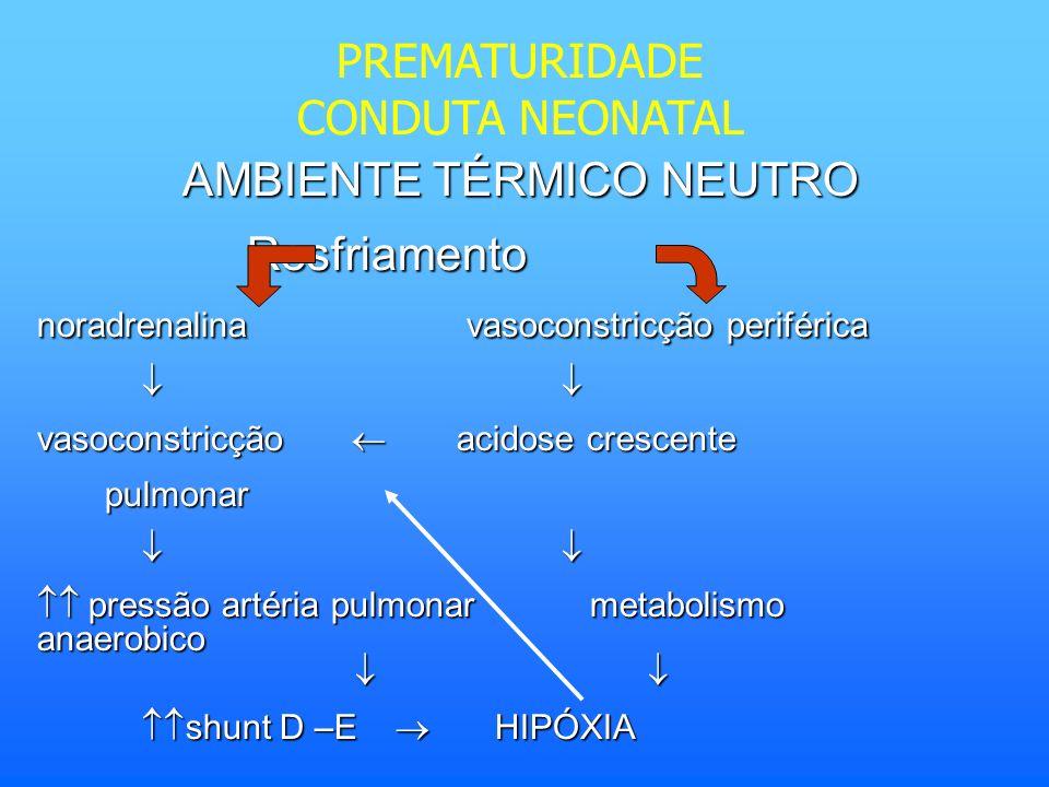 AMBIENTE TÉRMICO NEUTRO Resfriamento noradrenalina vasoconstricção periférica vasoconstricção acidose crescente pulmonar pulmonar pressão artéria pulm