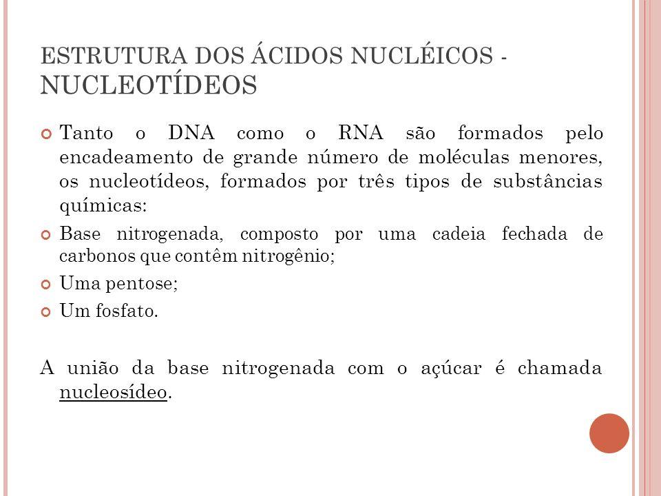 ESTRUTURA DOS ÁCIDOS NUCLÉICOS - NUCLEOTÍDEOS Tanto o DNA como o RNA são formados pelo encadeamento de grande número de moléculas menores, os nucleotí