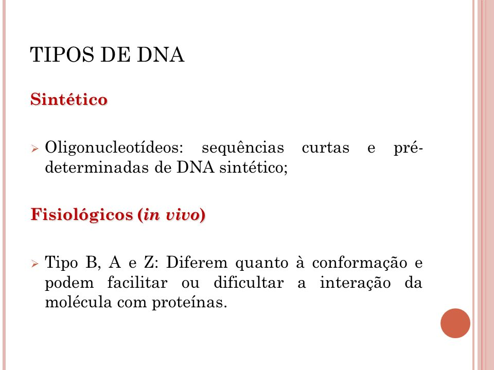 TIPOS DE DNA Sintético Oligonucleotídeos: sequências curtas e pré- determinadas de DNA sintético; Fisiológicos ( in vivo ) Tipo B, A e Z: Diferem quan
