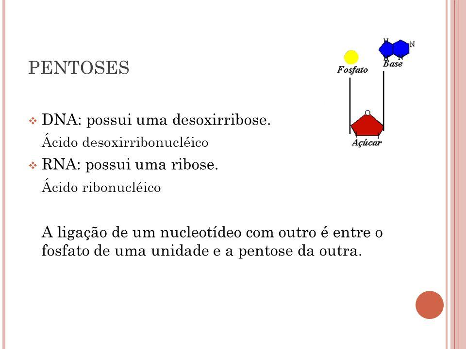 DNA: possui uma desoxirribose. Ácido desoxirribonucléico RNA: possui uma ribose. Ácido ribonucléico A ligação de um nucleotídeo com outro é entre o fo