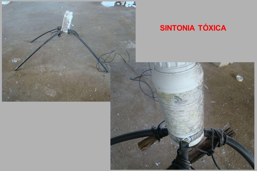 SINTONIA TÓXICA